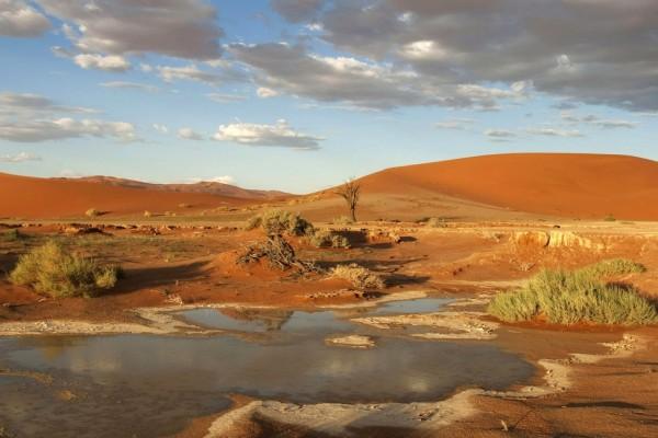 Charco en un desierto de arenas rojizas