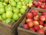 Manzanas verdes y rojas en cajas de madera