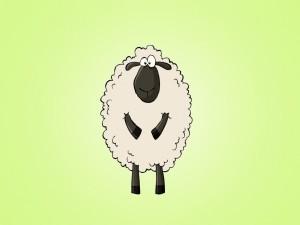 Una divertida oveja
