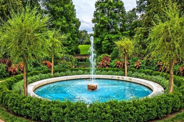 Bonita fuente rodeada de árboles y arbustos