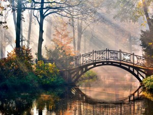 Rayos de sol iluminando un hermoso puente