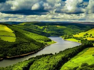Río que corre entre campos sembrados y pinares