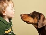 Niño cara a cara con su perro