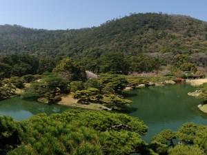 Árboles a orillas de un río en un jardín oriental