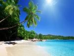 Bonito día en una playa tropical
