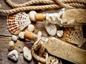 Conchas y arena de playa embotellada