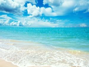 Contemplando el cielo y el mar