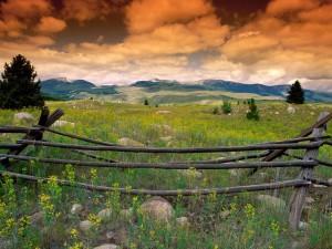 Valla en un campo para que no pase el ganado