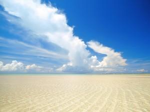 Ondas de arena en el mar