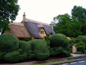 Arbustos frente a una original casa