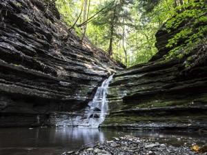 Pequeña cascada en un bosque