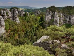 Paisaje con árboles entre grandes rocas