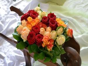 Bonito conjunto de rosas de colores en una carreta