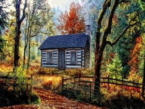 Pequeña casa en un bosque otoñal