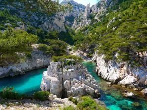 Río entre rocas y arbustos