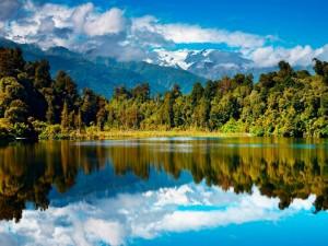 Cielo y árboles reflejados en el lago