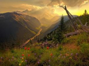 Hermosas vistas de un río entre montañas