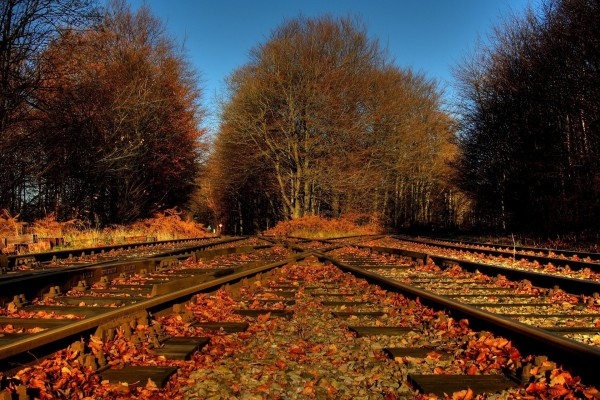 Vías del ferrocarril en otoño