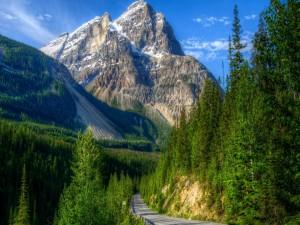 Carretera en el Parque Nacional Yoho (Canadá)
