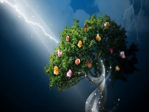 Árbol con encanto
