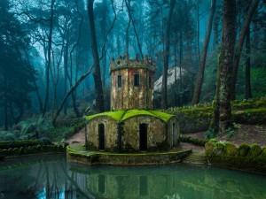 Torre en un bosque