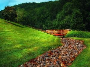 Río de piedras en un entorno verde