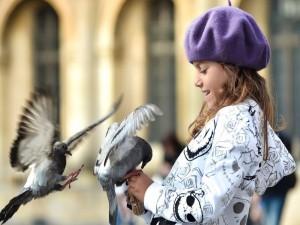 Paloma posada en las manos de una niña