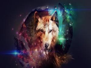 Cabeza de un lobo mágico