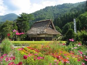 Primavera rodeando un templo oriental