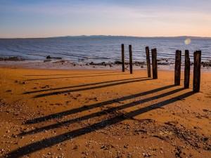 Pilares de madera en una playa de arena
