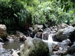 Pequeño río entre rocas