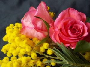 Ramo de rosas y mimosas