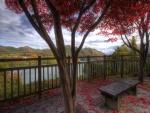Banco con vistas al lago entre árboles de hoja roja