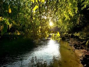 El sol brillando sobre un río