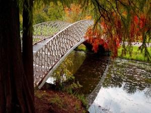 Puente metálico sobre un río