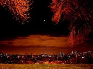 Vista de una ciudad en la noche