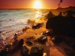 El sol del amanecer iluminando las piedras y arena de una playa