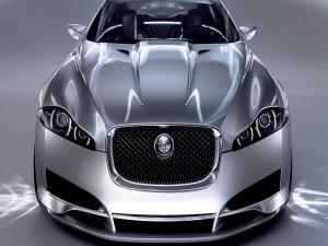 Un bonito Jaguar gris