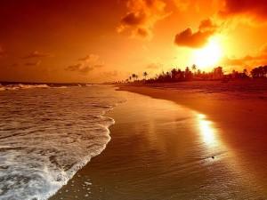 Hermoso amanecer en una gran playa