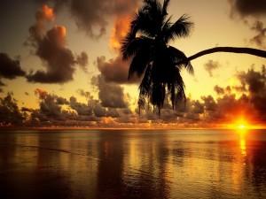El sol del amanecer sobre el mar