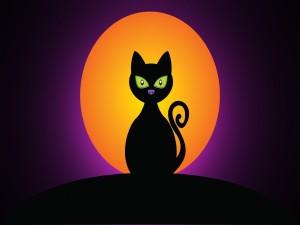 Un bonito gato negro con grandes ojos verdes