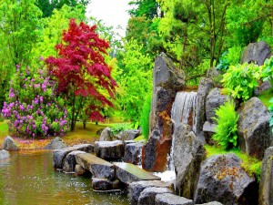 Atractiva cascada en un parque