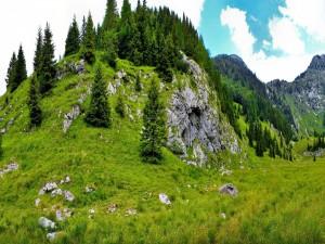 El verde del verano en el valle y montañas
