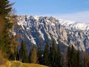 Fantásticas montañas que se alzan detrás del bosque