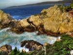 Rocas con vegetación en la costa