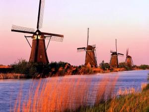 Hermoso paisaje con cuatro molinos de viento