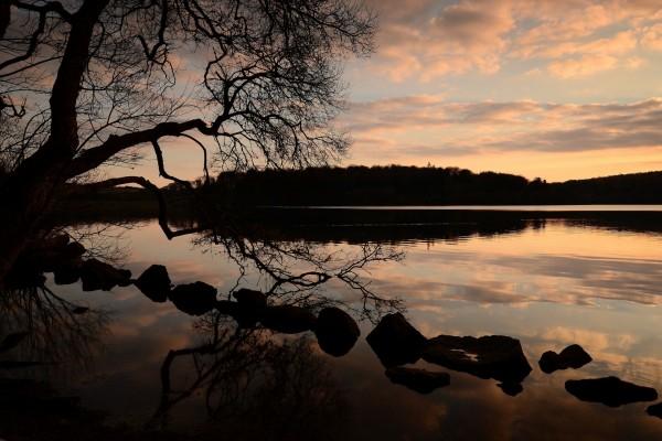 Amanecer en un lago