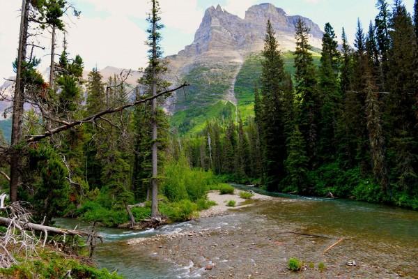 Río, montañas y árboles en el Parque Nacional de los Glaciares