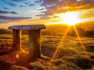 El sol brillante de la mañana iluminando un banco de madera