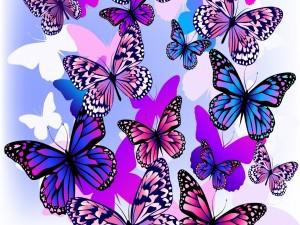 Muchas mariposas de colores